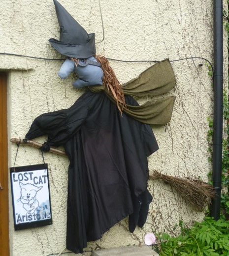 Picture of Aristotle the Witch, which won 2ns place at the scarecrow trail.